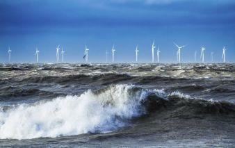 Offshore-Windpark.jpg