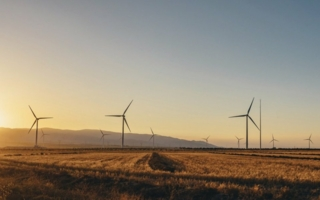 Windpark-erneuerbare-Energie.jpg